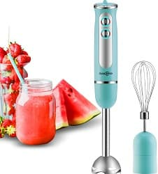 Auxcuiso Stick Blender